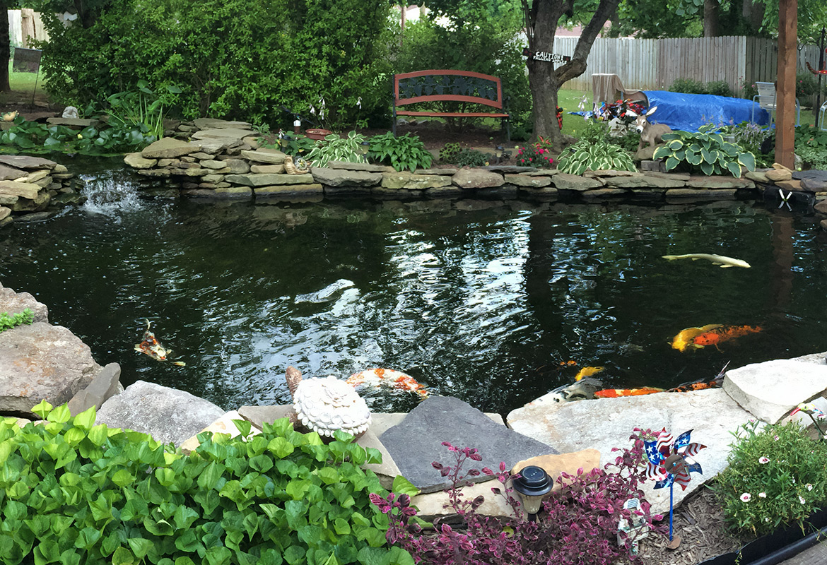Water garden society to host tour of local ponds for Local landscape gardeners