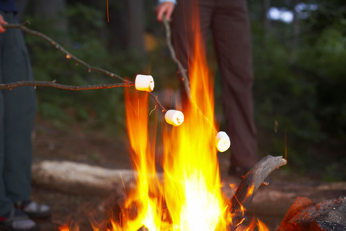 State Fire Marshal: Practice campfire safety this summer ...