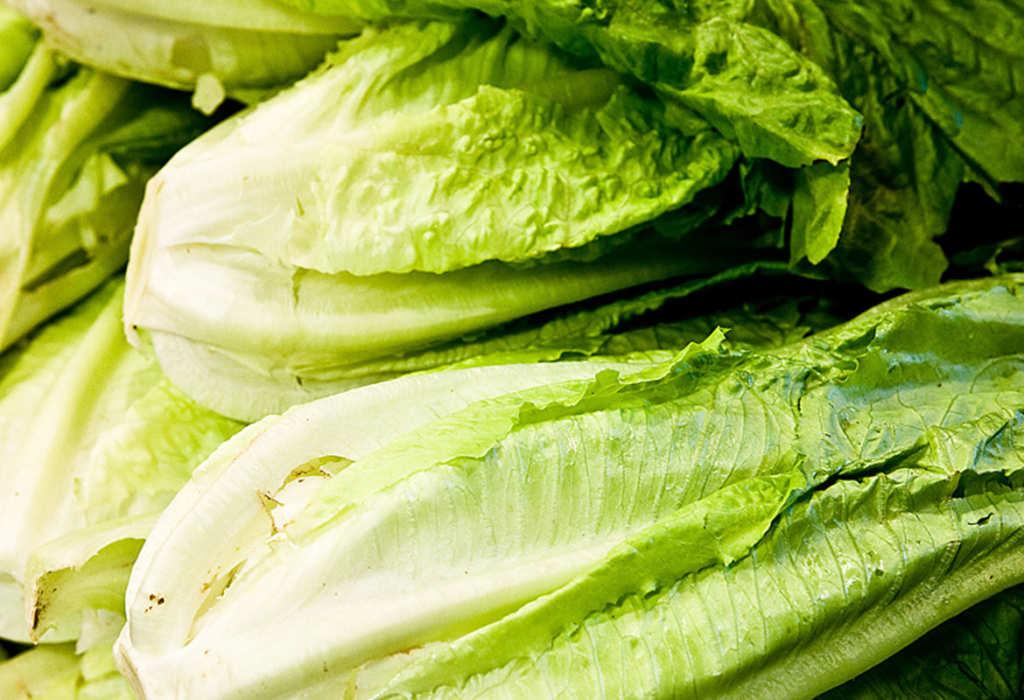 Cabbage clipart lettuce garden, Cabbage lettuce garden Transparent FREE for  download on WebStockReview 2020