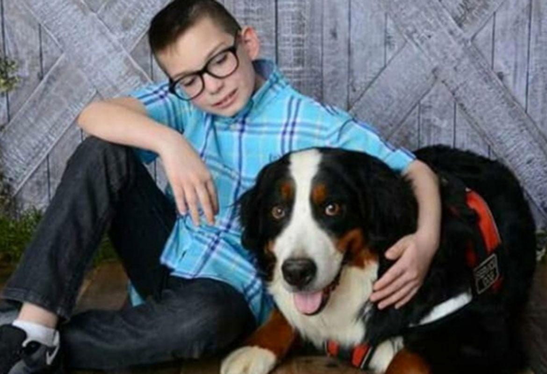 Reward Offered For Clarksville Boys Missing Service Dog