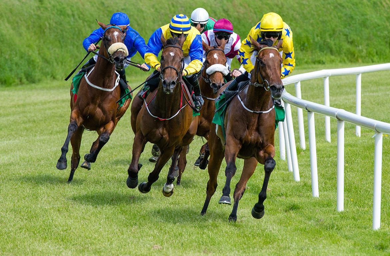 Companies set to break ground on new horse racing track in Oak Grove