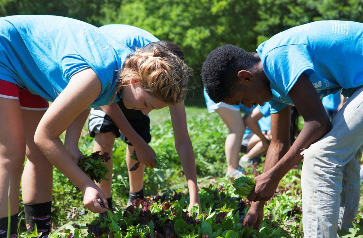 Giving Grace: The Food Initiative grows healthy food to
